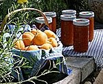 Apricots, and apricot jams
